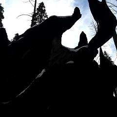 Xiu Xiu Twin Peaks Ambien