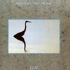 Bold As Light - Stephan Micus