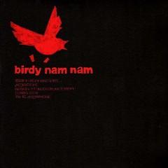 Engineer Fear - Birdy Nam Nam