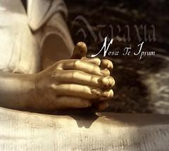 Nosce Te Ipsum - Ataraxia