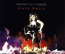 Moments of Pleasure 12 inch vinyl