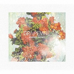 ROADSIDE PROPHET - GRAPEVINE