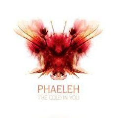 The Cold In You - Phaeleh