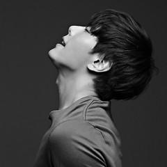 Album Nhạc Hàn Bất Hủ - Various Artists