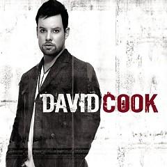 David Cook - David Cook