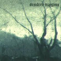Songs Over Ruins - Desiderii Marginis