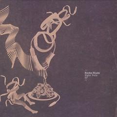 Night Falls EP - Booka Shade