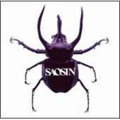 Saosin (Japan Import) - Saosin