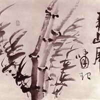Phong (Feng)