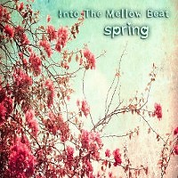 Into The Mellow Beat Vol.4