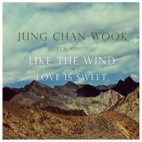 Like The Wind