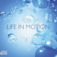 Life In Motion - Paul Reeves