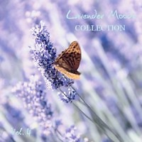 Lavender Moods Collection Vol 4