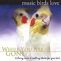 Music Birds Love: While You Are Gone - Bradley Joseph