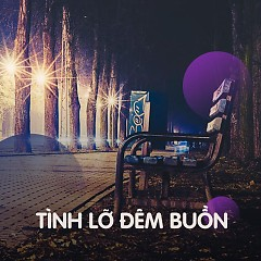 Tình Lỡ Đêm Buồn - Various Artists