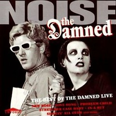 Noise (The Best Of The Damned Live)