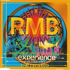 Experience (Follow Me) (The Remixes CD)