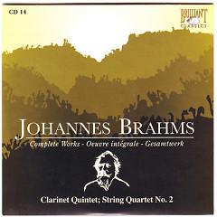 Johannes Brahms Edition: Complete Works (CD14)