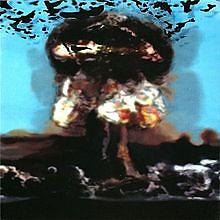 The Phoenix Tree - Mono