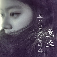 Wanted To See (보고싶었습니다) - Ho So