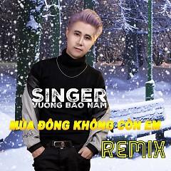 Mùa Đông Không Còn Em (Remix) (Single)