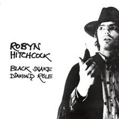Black Snake Diamond Röle - Robyn Hitchcock