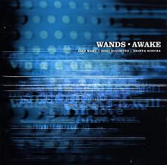 Awake - WANDS