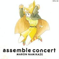 Assemble Concert