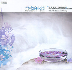 The Music Of Flower Essence Remedies CD2
