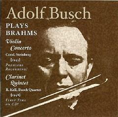 Brahms Concertos Vol 4