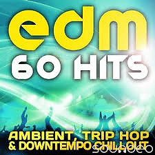 EDM Ambient, Trip Hop & Downtempo Chillout (No. 1) - Various Artists