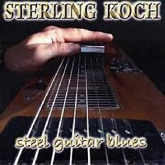 Steel Guitar Blues