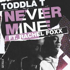 Never Mine (Single) - Toddla T
