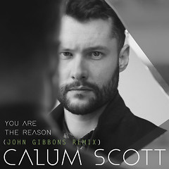 You Are The Reason (John Gibbons Remix) - Calum Scott, John Gibbons