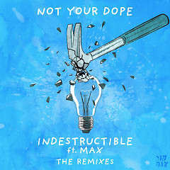 Indestructible (The Remixes) - Not Your Dope