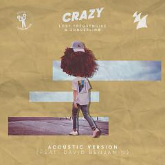 Crazy (Acoustic Version) - Lost Frequencies, Zonderling