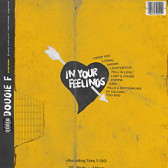 In Your Feelings - Dougie F