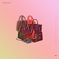 The Shop (Single) - Mighty Fine
