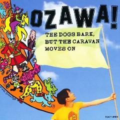 dogs  - Kenji Ozawa