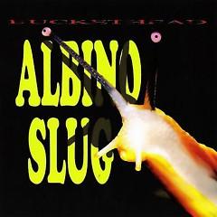 Albino Slug