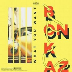 What You Want (Single) - Bonkaz