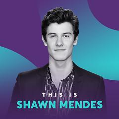 Những Bài Hát Hay Nhất Của Shawn Mendes - Shawn Mendes