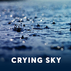 Crying Sky - Various Artists