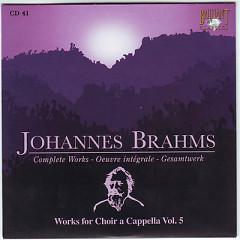 Johannes Brahms Edition: Complete Works (CD41)
