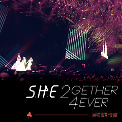 S.H.E 2GETHER 4EVER WORLD TOUR 2013 CD2