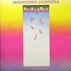 Birds Of Fire (Original Album Classics Box) - Mahavishnu Orchestra