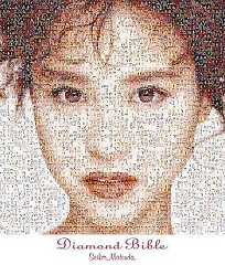 Diamond Bible (CD4)