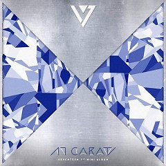 1st Mini Album '17 CARAT'