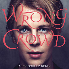 Wrong Crowd (Alex Schulz Remix)