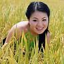 Quê Hương Tôi - Anh Thơ, Quang Hào